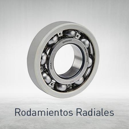 Rodamientos radiales