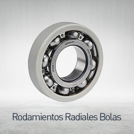 Rodamientos radiales a bolas