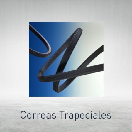 Correas trapeciales