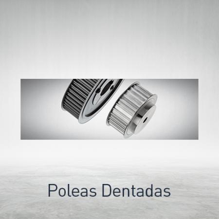 Poleas dentadas