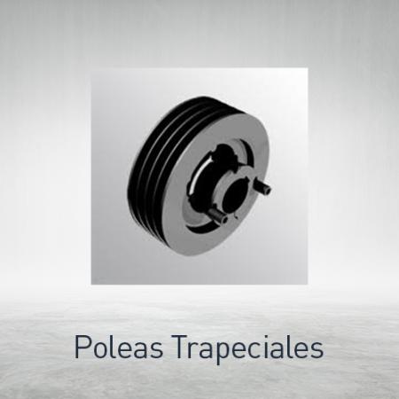 Poleas trapeciales