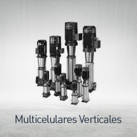Multicelulares verticales