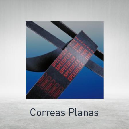 Correas planas
