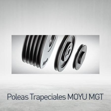 Trapeciales MOYU MGT