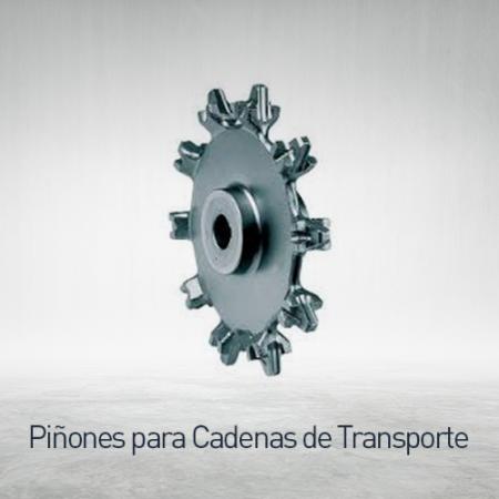 Piñones para cadena de transporte